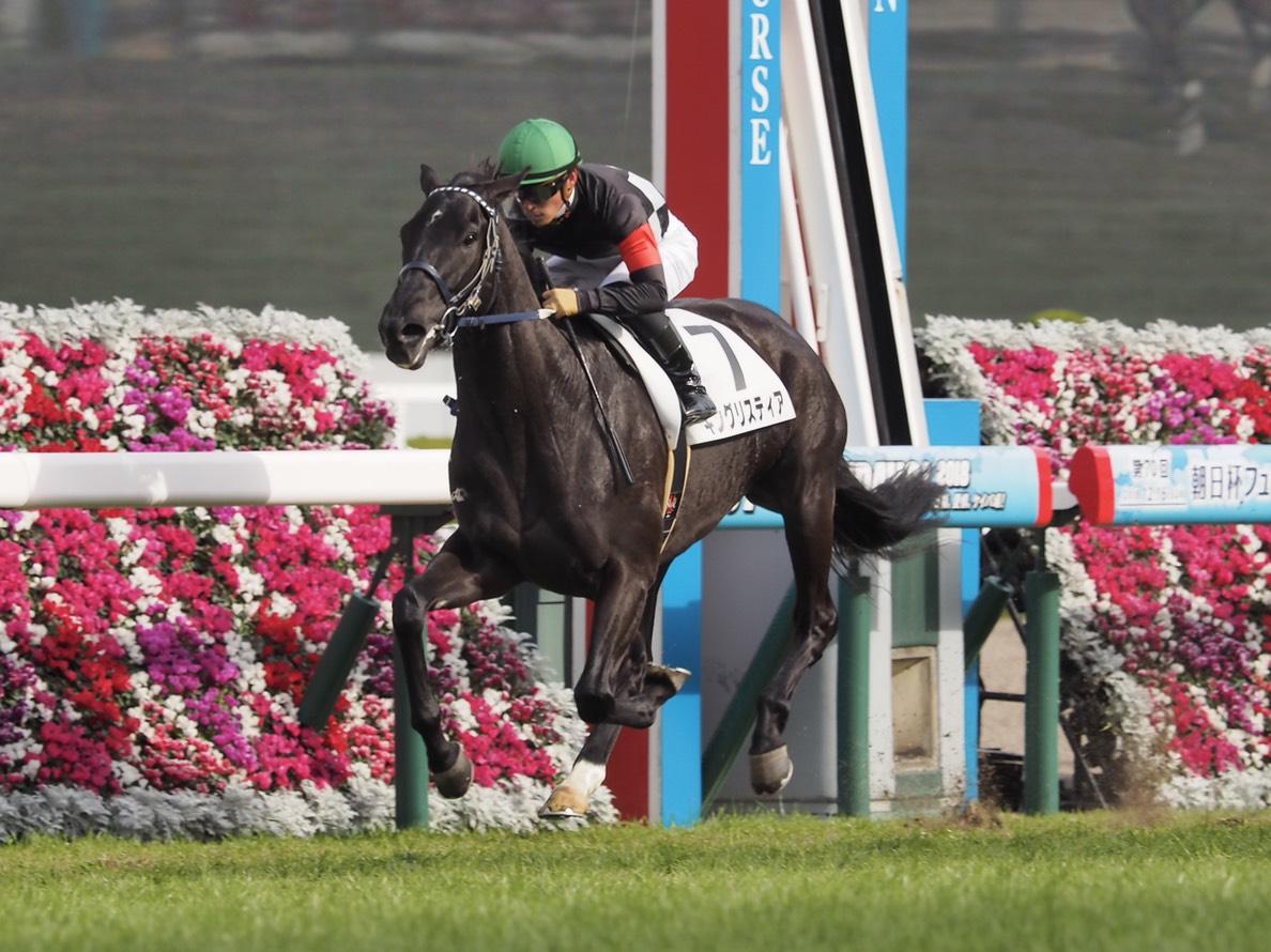 【阪神5R/新馬】キングリスティアが逃げ切りでデビュー勝ち