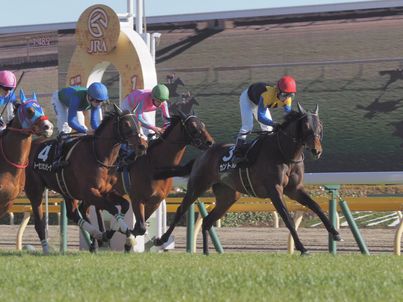 【セントポーリア賞】良血馬カントルが2勝目!兄にワグネリアン