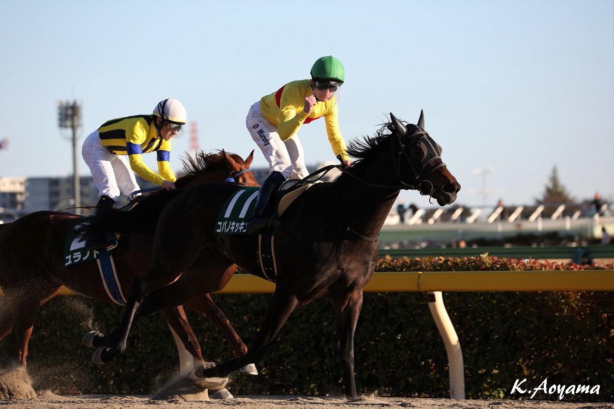 【根岸S】ルメール「勝った馬が強い」レース後 ジョッキーコメント