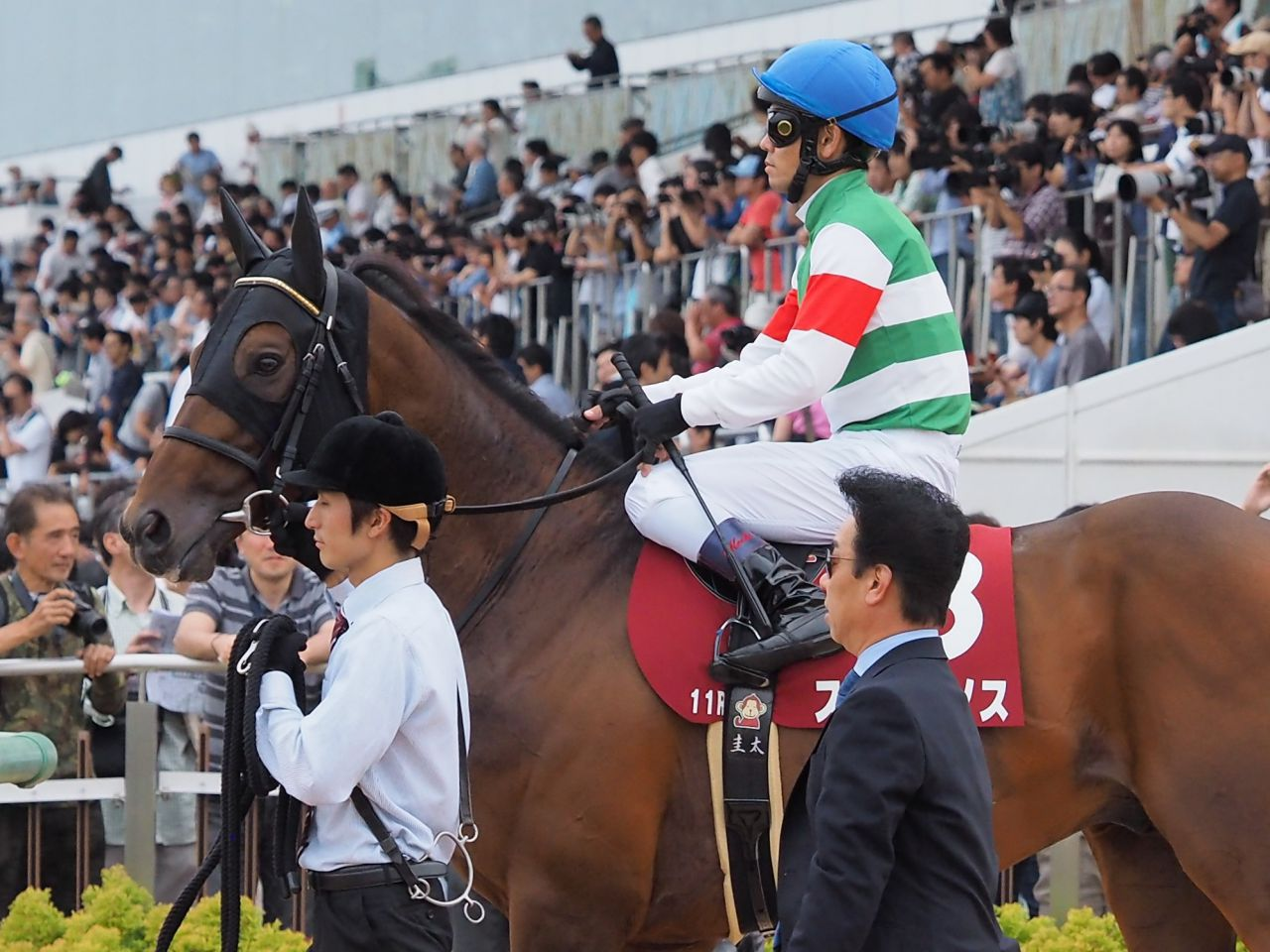 【京成杯】シークレットラン  田村師「すごく賢い馬」