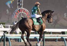 【京成杯】内田博「途中から厳しいレースに…」レース後ジョッキーコメント