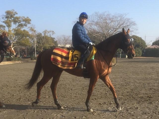 2019ドバイワールドカップデー 日本馬の招待受諾