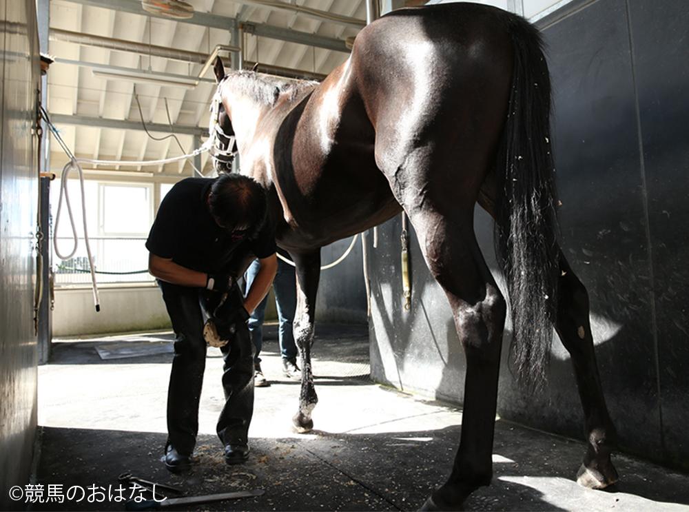 西内荘/装蹄の感触が良かった馬【2/23土曜版】