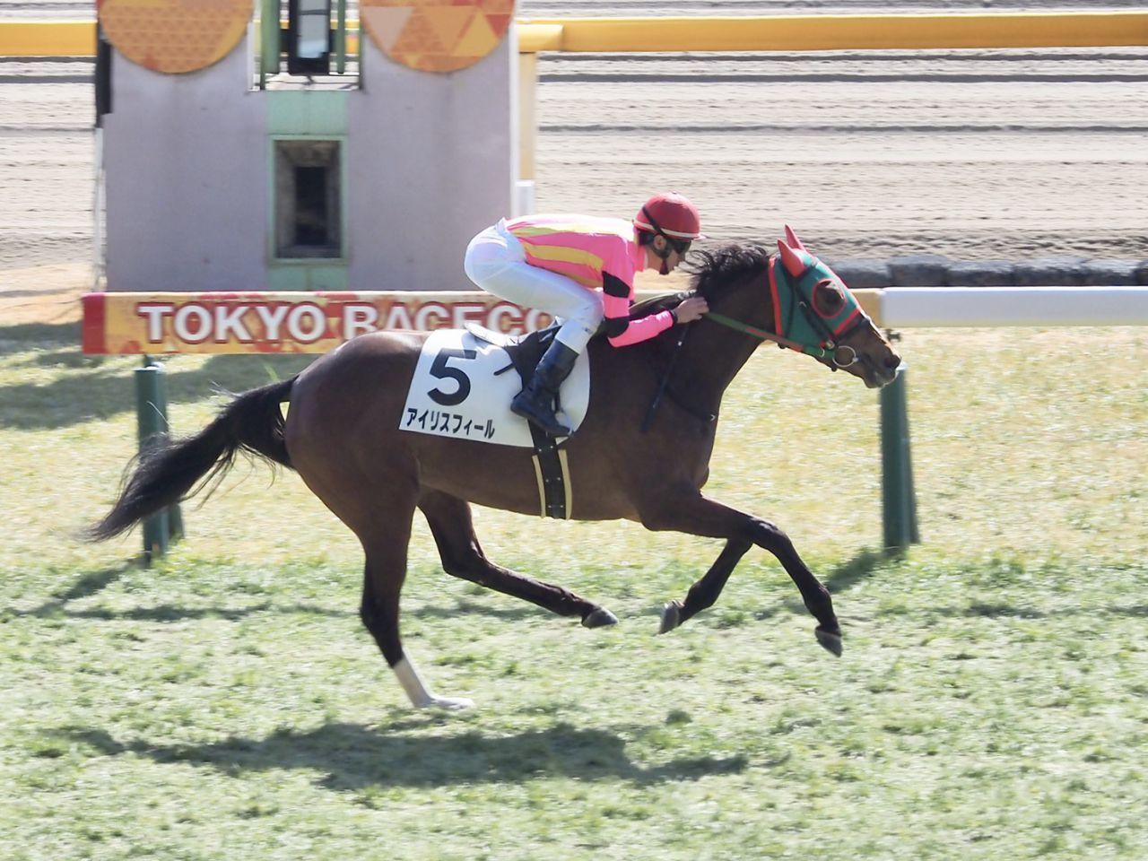 【東京5R/新馬戦】アイリスフィールが余力十分のデビュー勝ち