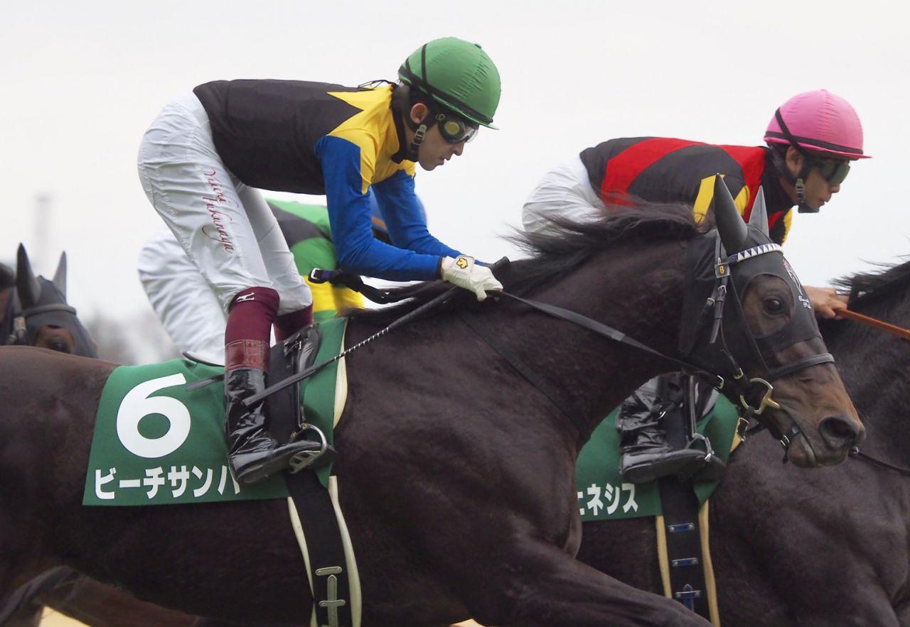 【テレビ山梨杯】8番人気アモーレミオが完勝!