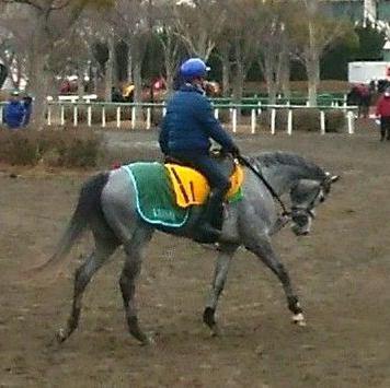 【京都牝馬S】デアレガーロ 池添「折り合いがカギ」