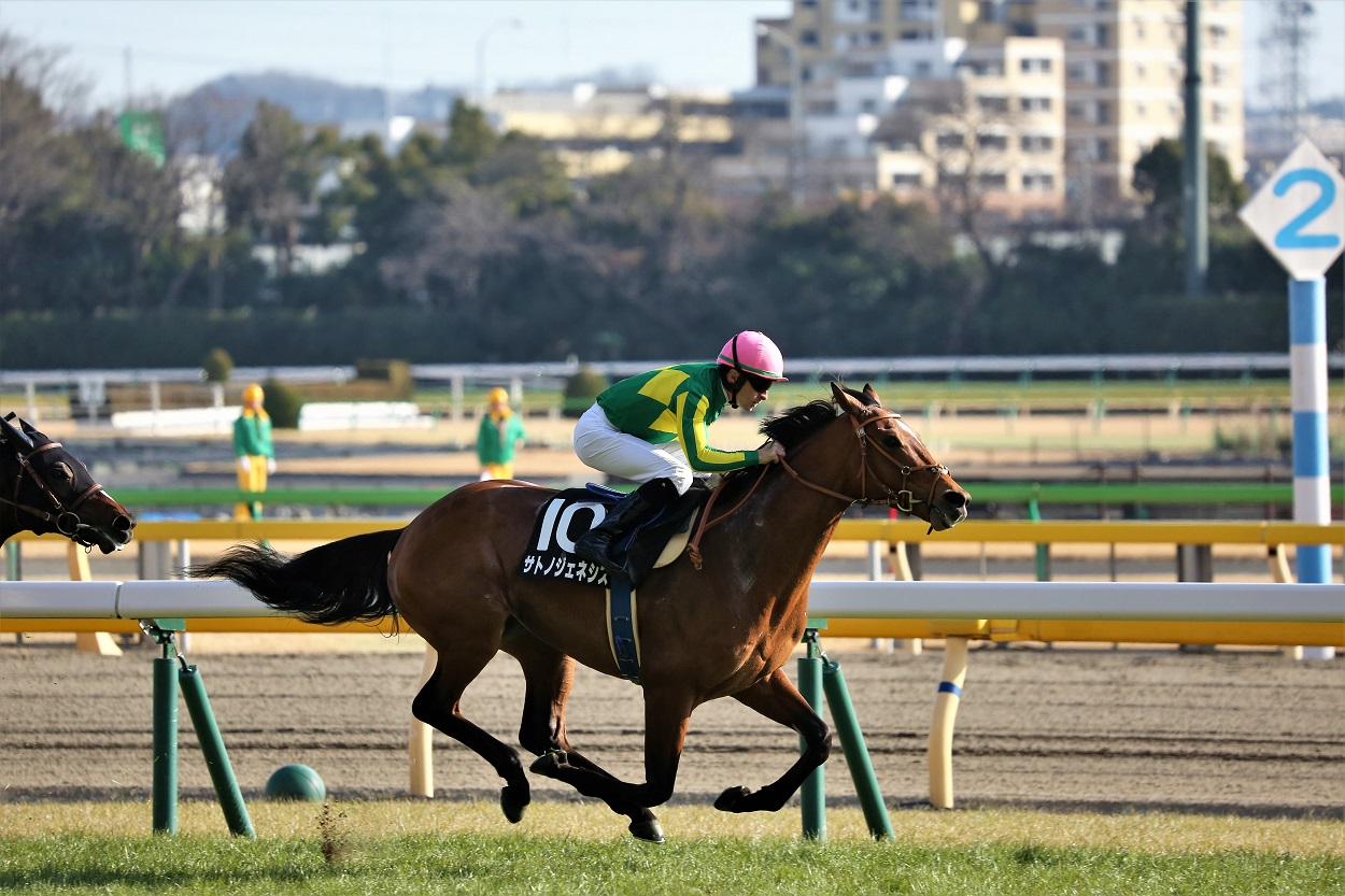 日曜東京4R新馬はルメール騎乗のフィードバックが制す