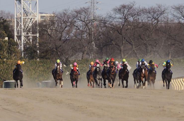 【フェブラリーS】ルメール「また2着…」レース後 ジョッキーコメント