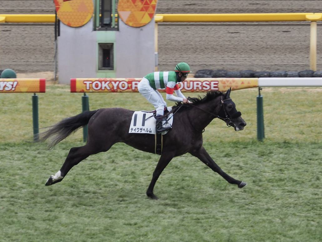【東京6R/新馬戦】戸崎「レースセンスが良かった」テイクザヘルムがデビューV!
