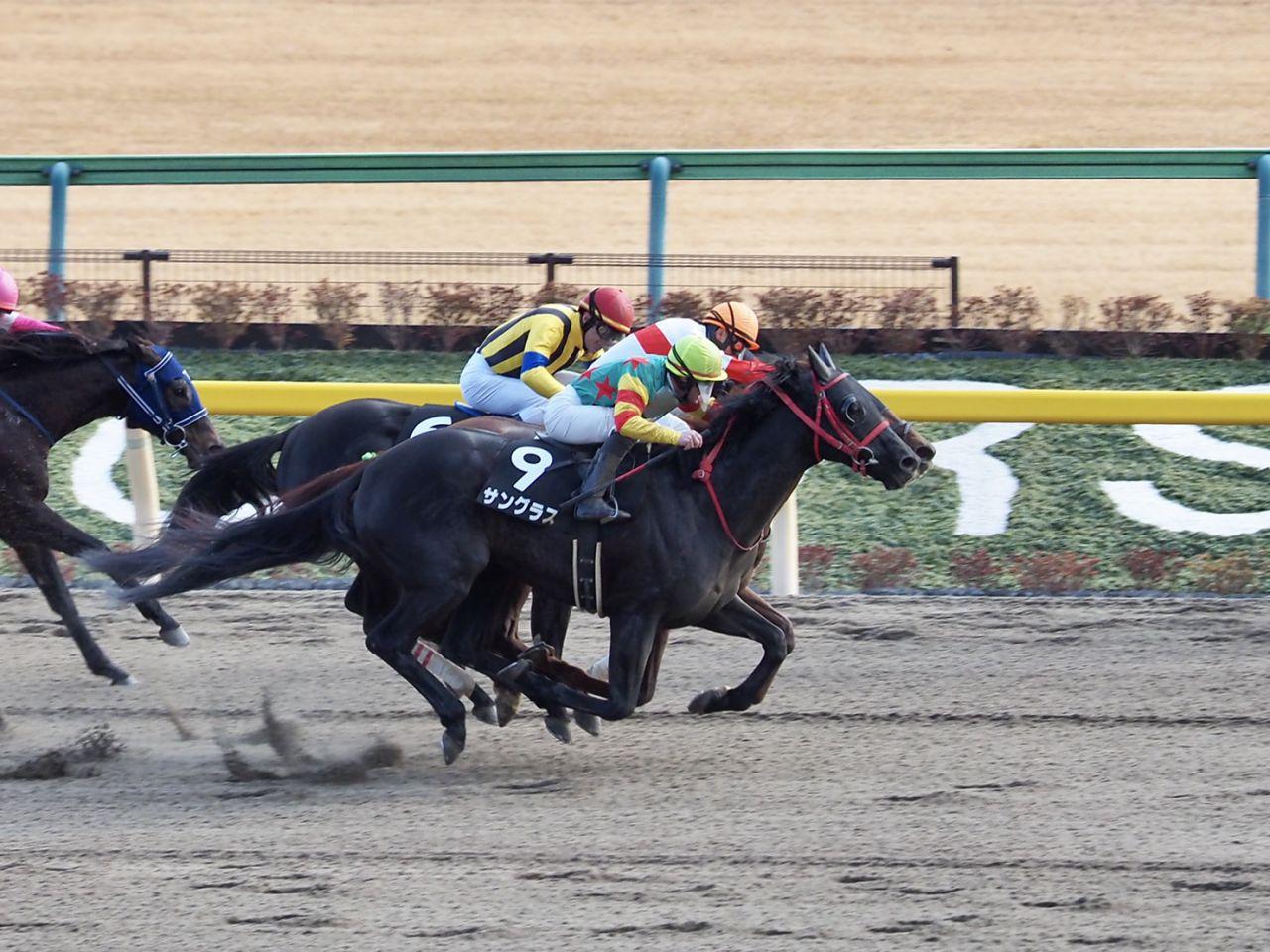 【バレンタインS】8歳馬サングラスが約2年ぶりV!