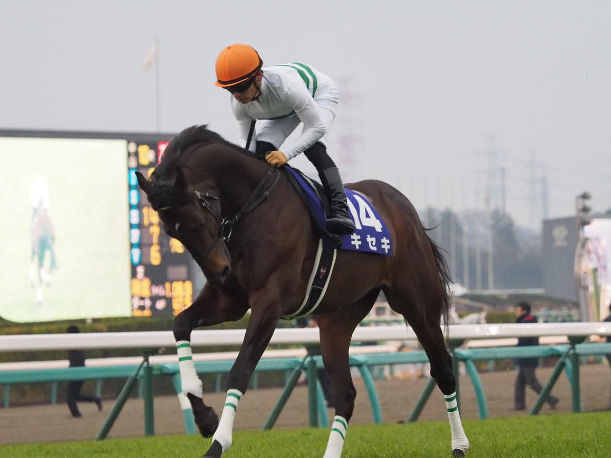2019凱旋門賞(G1)出走予定馬のイギリス到着について