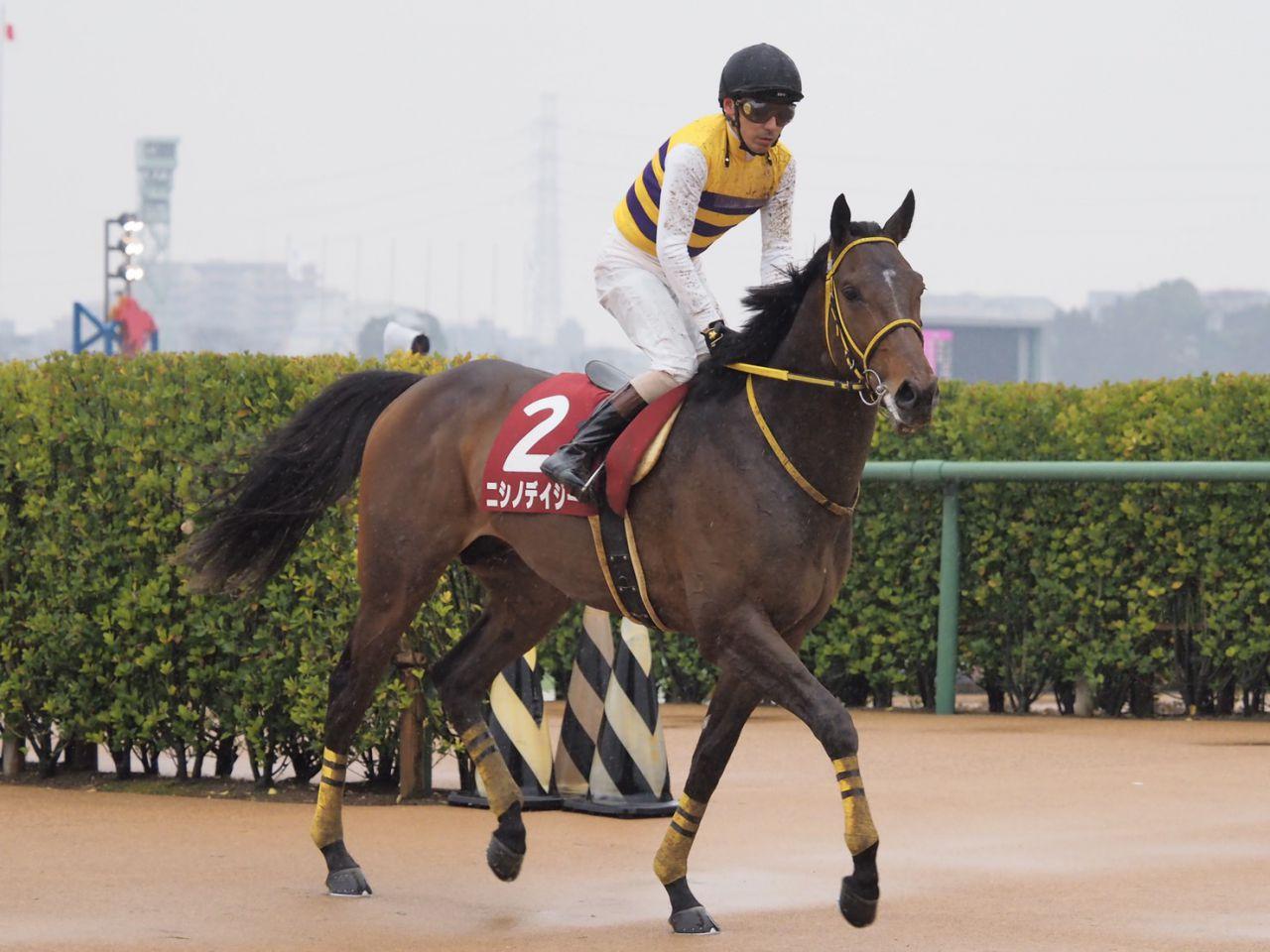 【小倉4R】斎藤新騎手が初勝利!7番人気アルファライズを勝利に導く