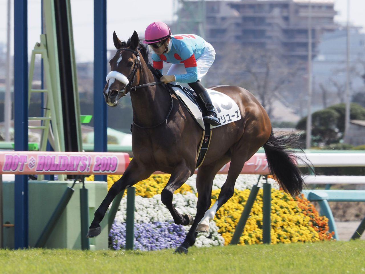 【中山6R】ディープインパクト産駒 セリユーズが圧勝!