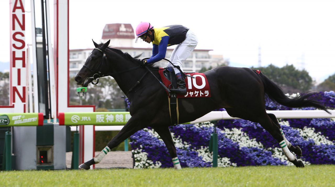 【阪神大賞典】シャケトラ圧勝!平成最後の天皇賞春へ向け視界良好