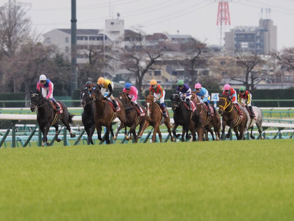 【日経賞】デムーロ「坂を上がってから…」関係者コメント
