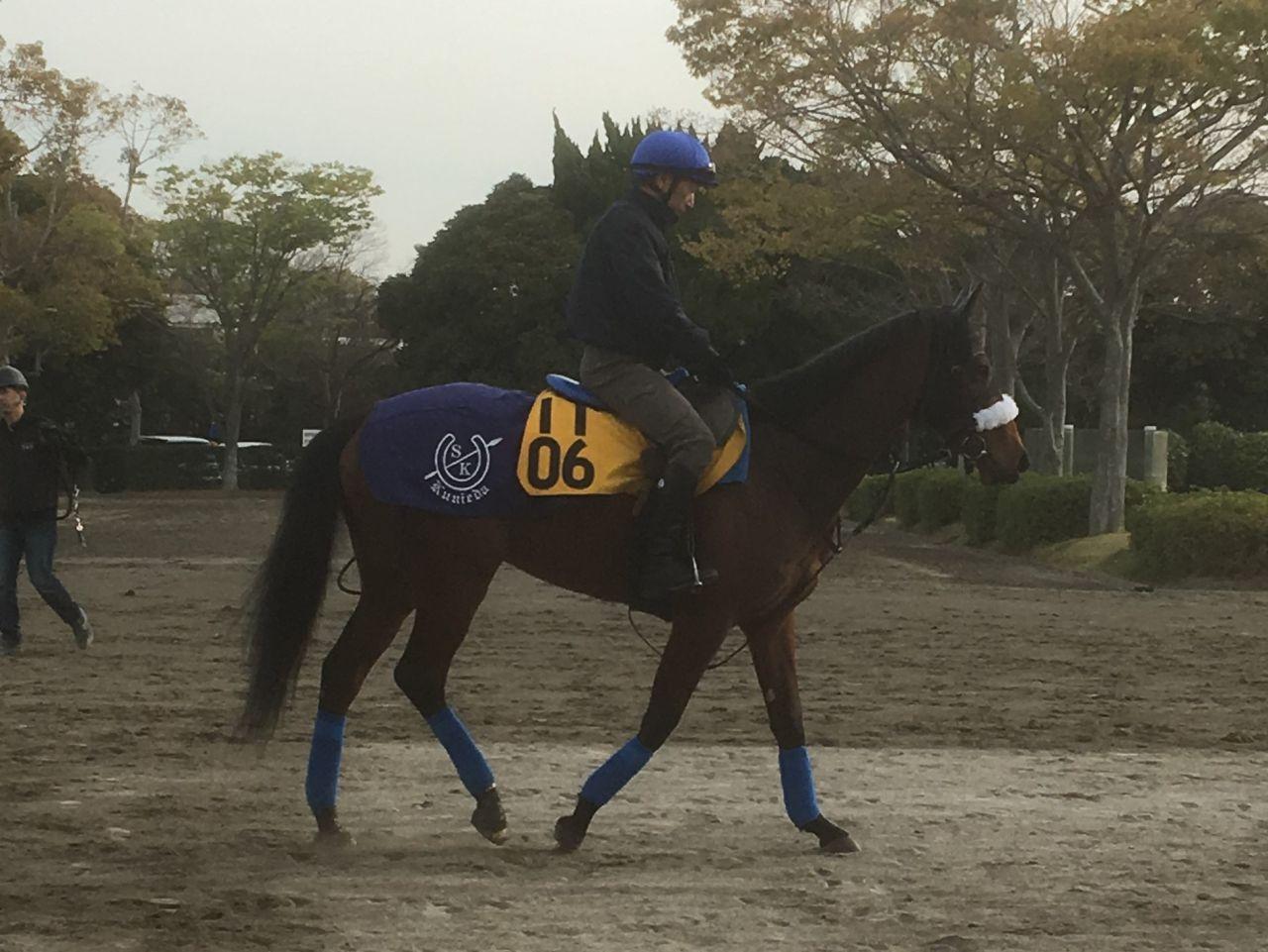 【福島牝馬S】ダノングレース 3連勝で重賞タイトルなるか