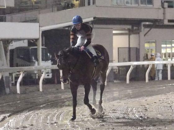 【PHOTO】地方競馬