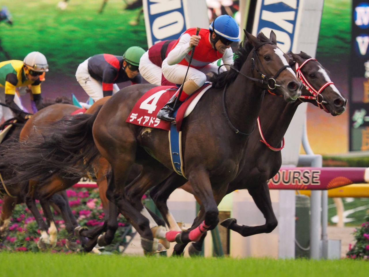 2019香港チャンピオンズデーに出走予定のディアドラ号が香港に到着