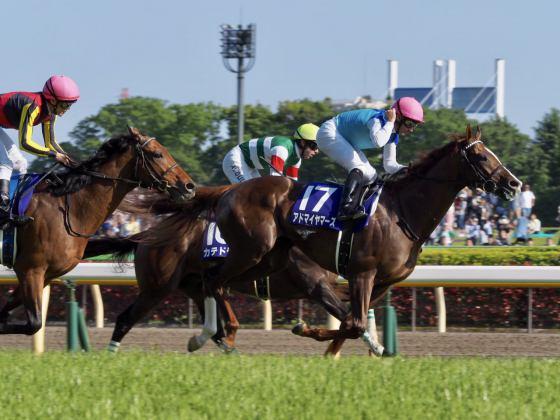 【PHOTO】NHKマイルカップ