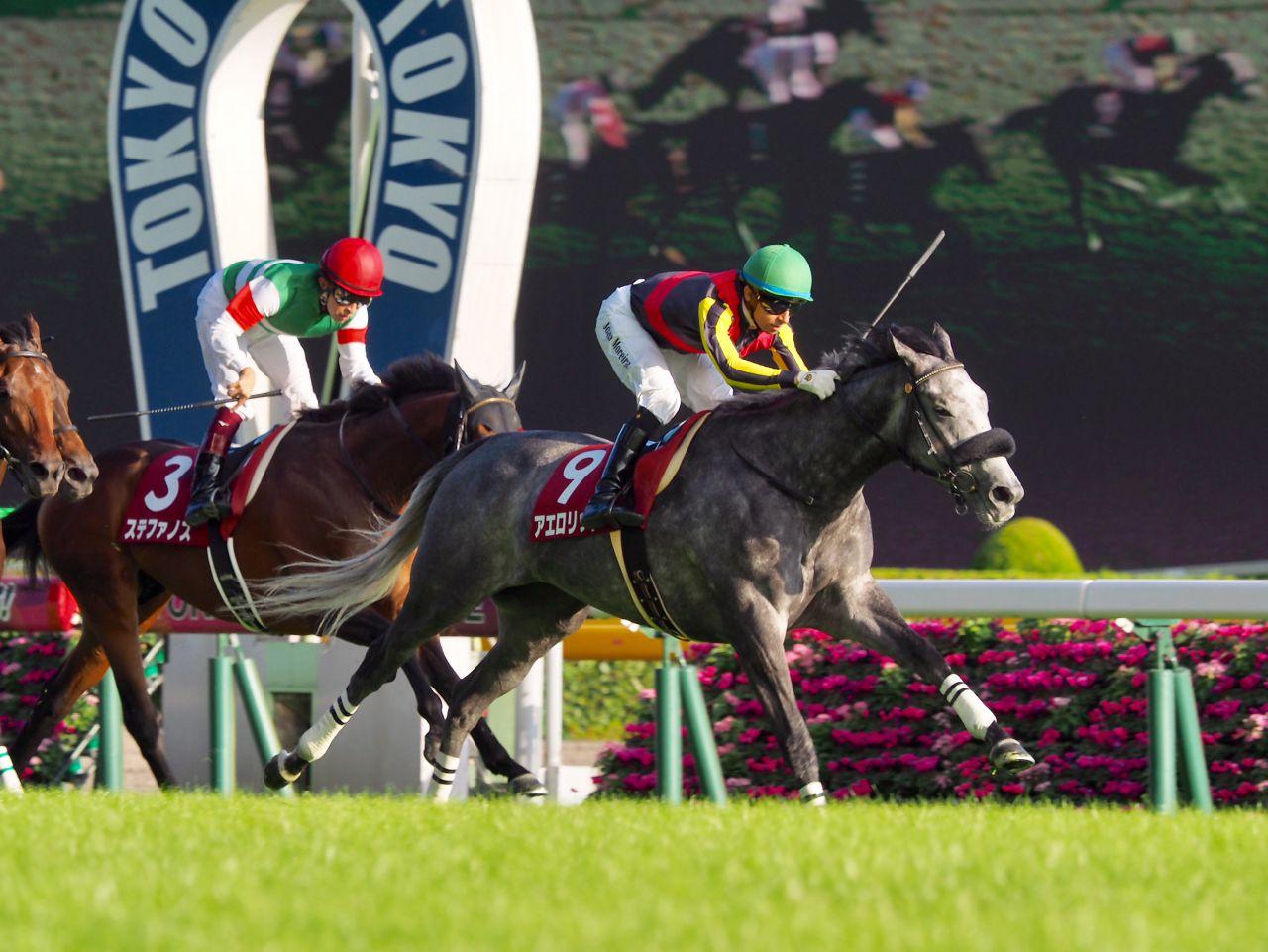 【ヴィクトリアマイル】アエロリット 菊沢師「東京は1番パフォーマンスが上がる」