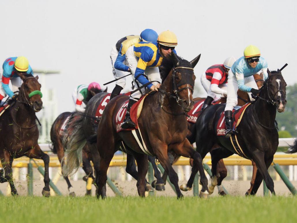 【目黒記念】大竹師「最後に止まったのは初めて」レース後 関係者コメント