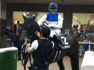 土曜東京11R・メイSはダイワキャグニーが昨年に続く連覇を達成