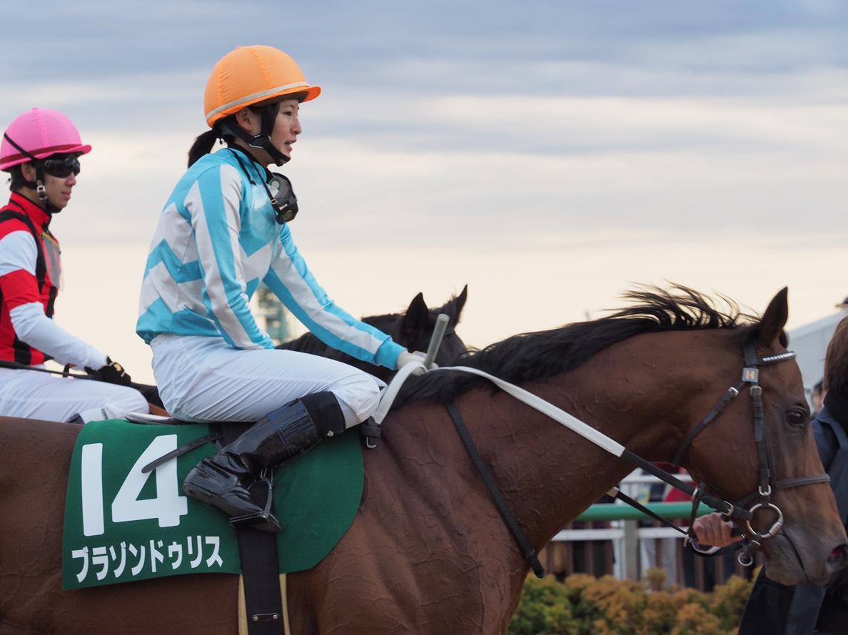 ブラゾンドゥリス号が競走馬登録抹消