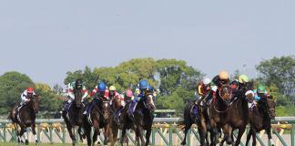 【オークス】津村「直線が長かった…」レース後 ジョッキーコメント
