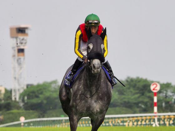 【PHOTO】サンデーレーシング