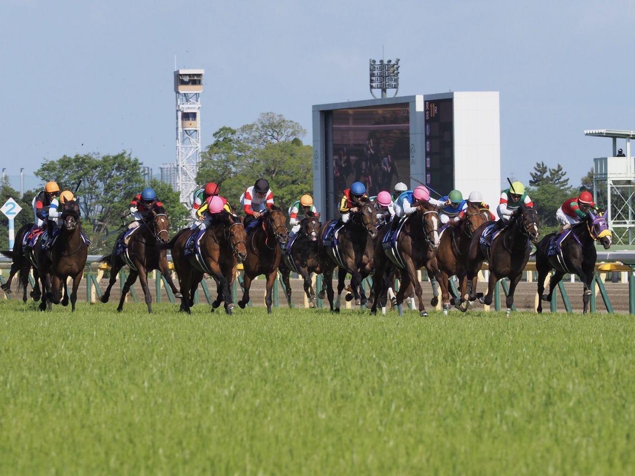 【NHKマイルC】川田「デキは凄くよかった」レース後 ジョッキーコメント
