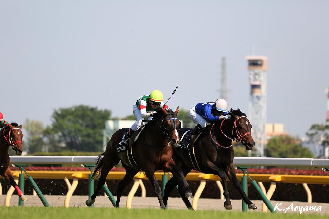 【緑風S】ヴァントシルムが4勝目