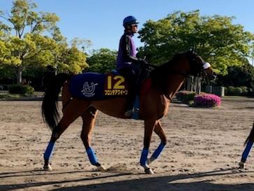 【ヴィクトリアマイル】フロンテアクイーン 三浦「すごい勝負根性を持っている馬」