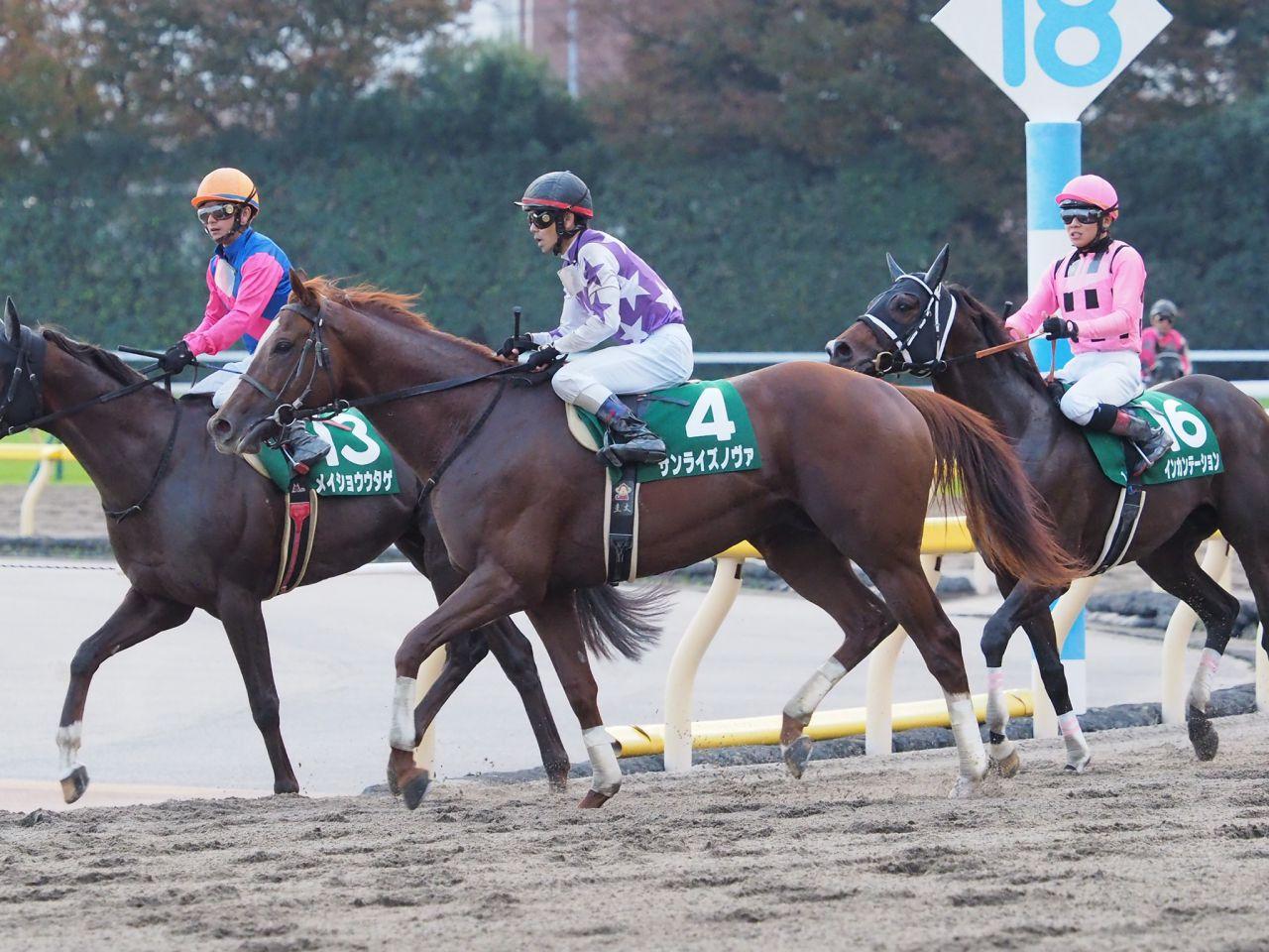 【大井記念】4歳馬モジアナフレイバーが圧勝!繁田「最高に嬉しいです」