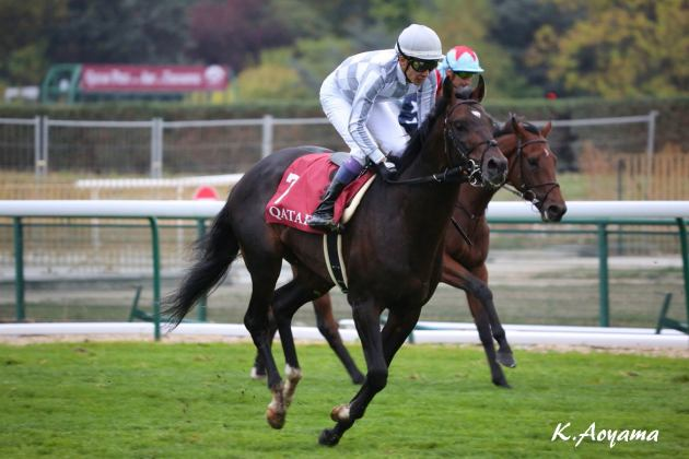 【PHOTO】海外競馬