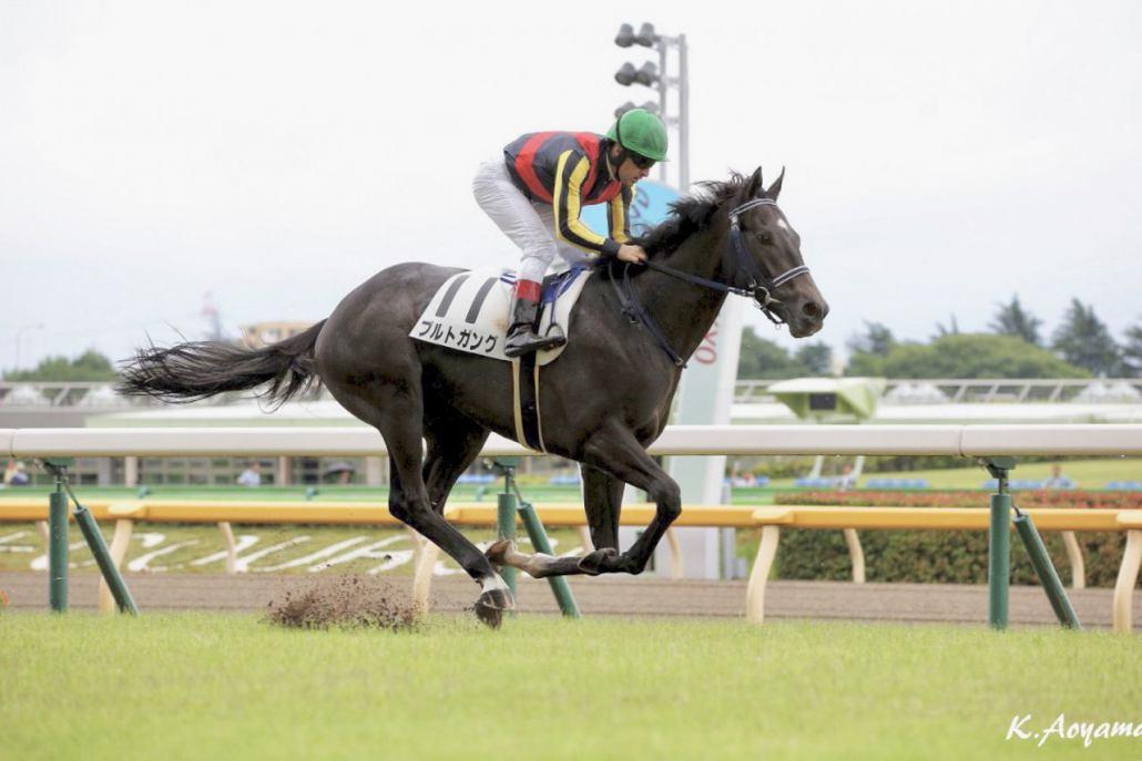 【新馬/東京5R】グランアレグリア全弟 ブルトガングが圧勝デビューV!