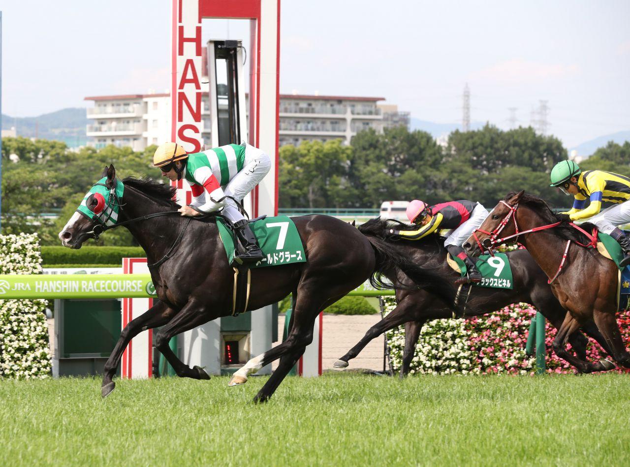 【阪神4R】6番人気 プリモプレミオが初勝利!武豊騎手好調