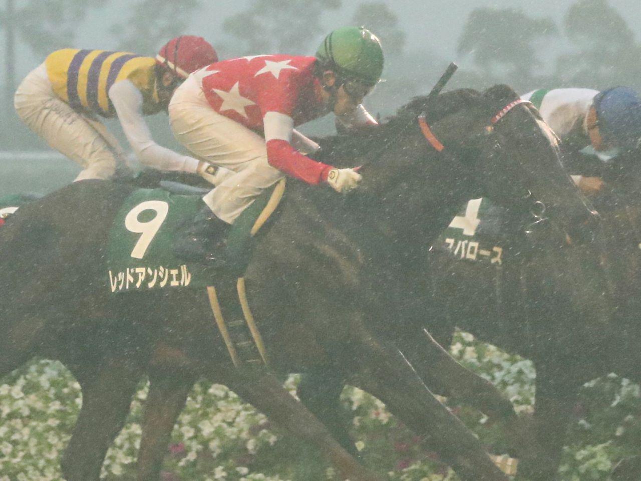 【ラジオNIKKEI賞】Mデムーロ「馬場が…」ヒシイグアスは伸びず9着敗退