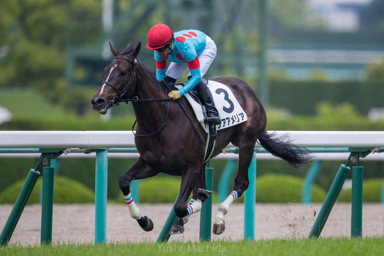 【新馬/阪神5R】8馬身差圧勝!新馬戦第一号はリアアメリア