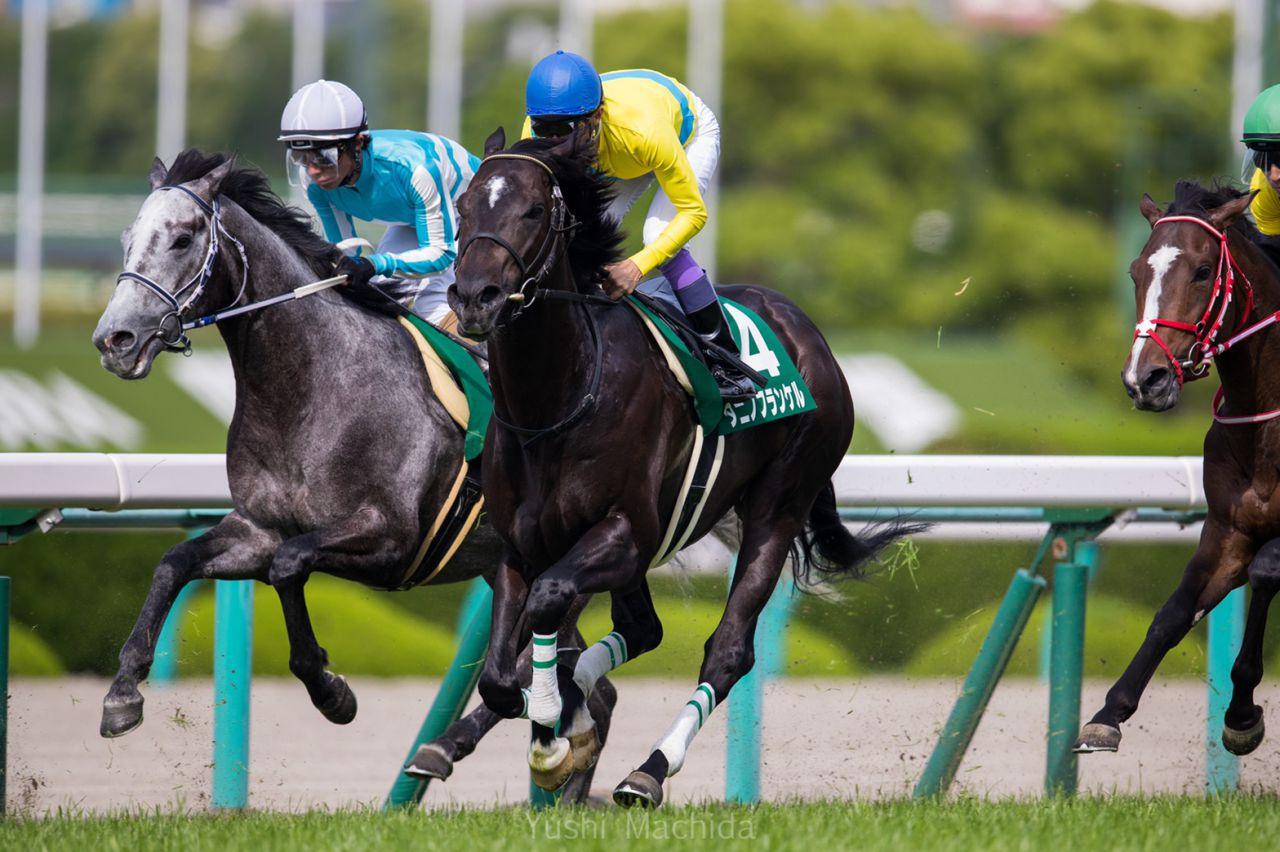【鳴尾記念】D.レーン「馬の強さに助けられた」メールドグラースが重賞2連勝!