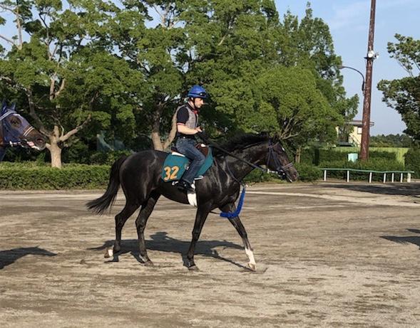 【注目新馬】ブルトガング  グランアレグリア全弟が始動