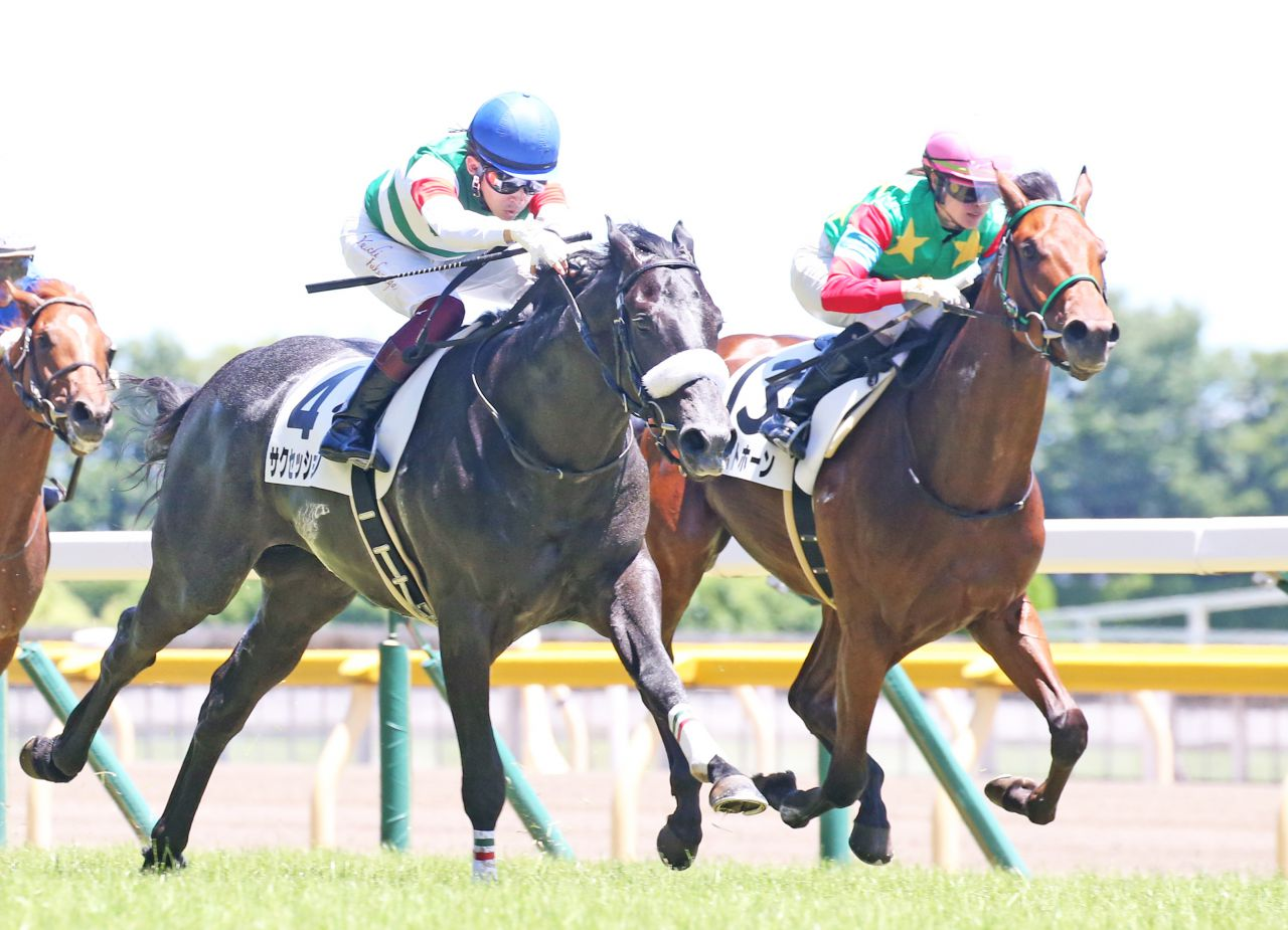 【新馬/東京5R】サクセッションが断然の人気に応える