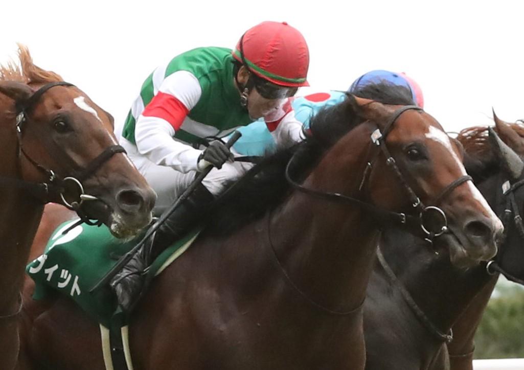 【中京記念】松山「強い競馬」グルーヴィットがゴール前の大混戦を制する!