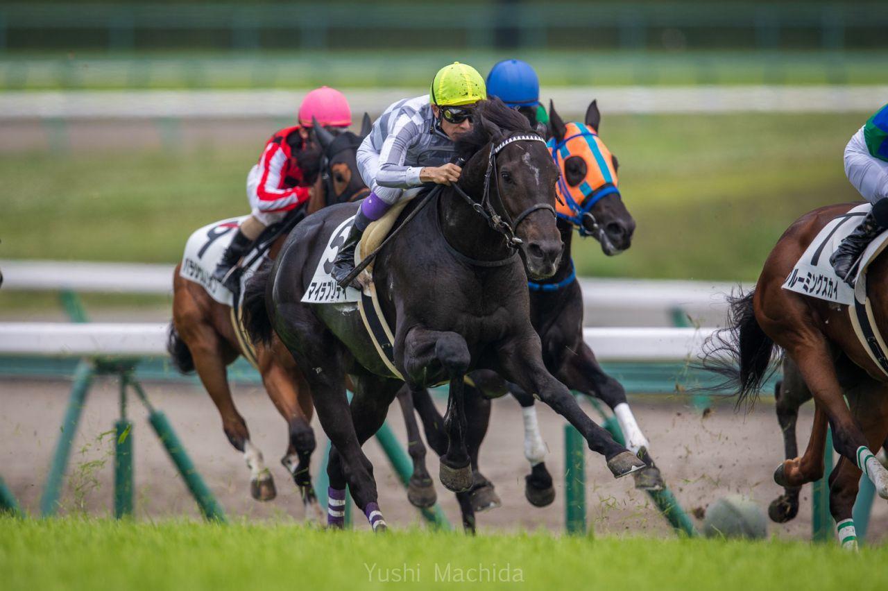 【日曜中京/新馬5R】武豊「伸びしろある」マイラプソディが上がり最速で差し切りV!