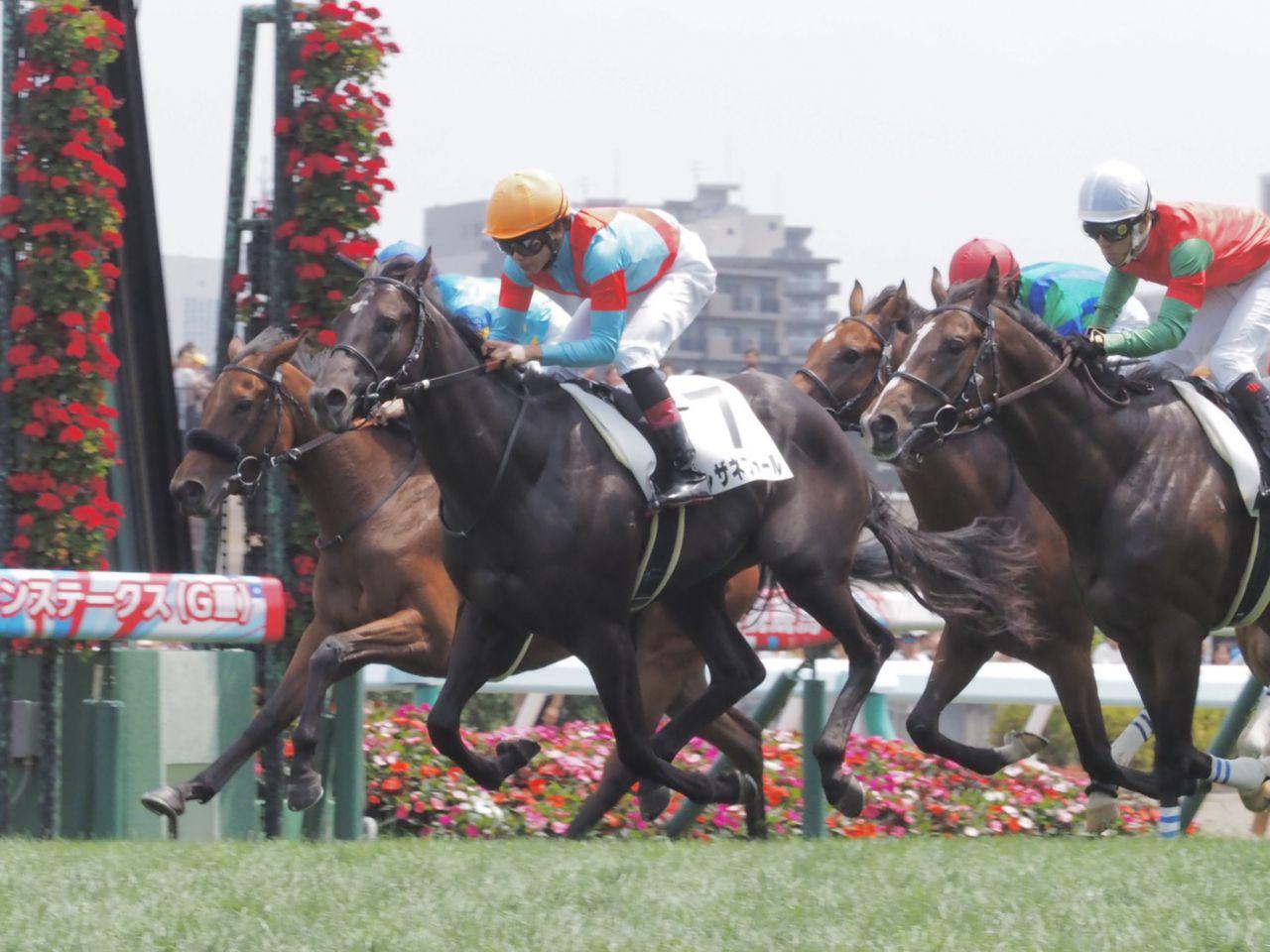 【新馬/札幌5R】圧倒的人気レザネフォールが完勝!