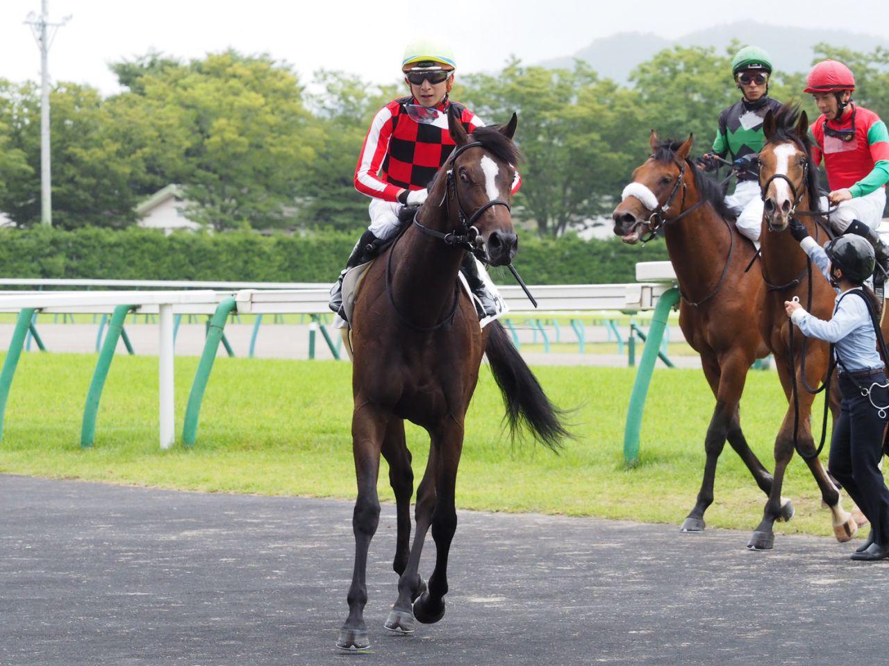 【新馬/中京5R】武豊「将来性を感じた」マイラプソディが強い競馬を見せる