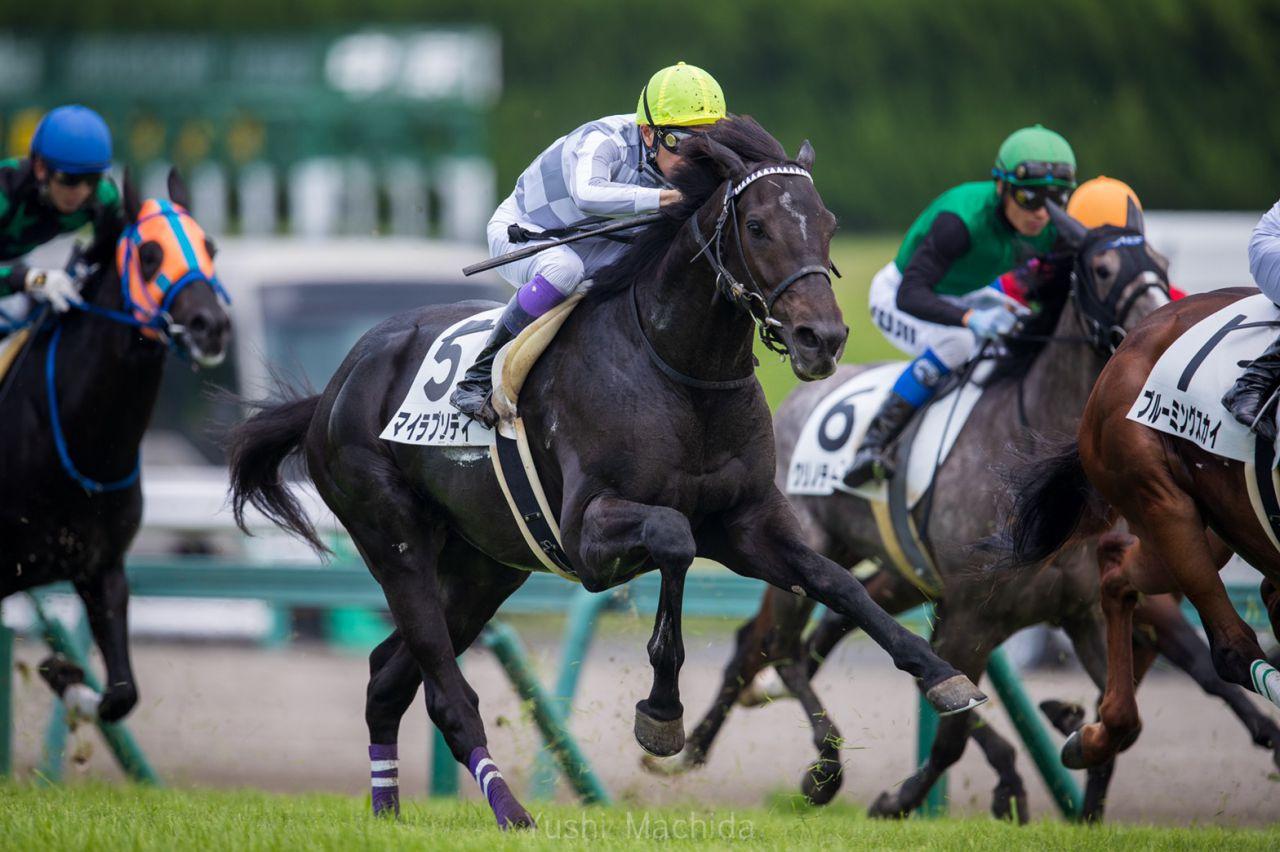 【新馬/函館5R】オーソリティが快勝!シルクレーシングが新馬戦で好調