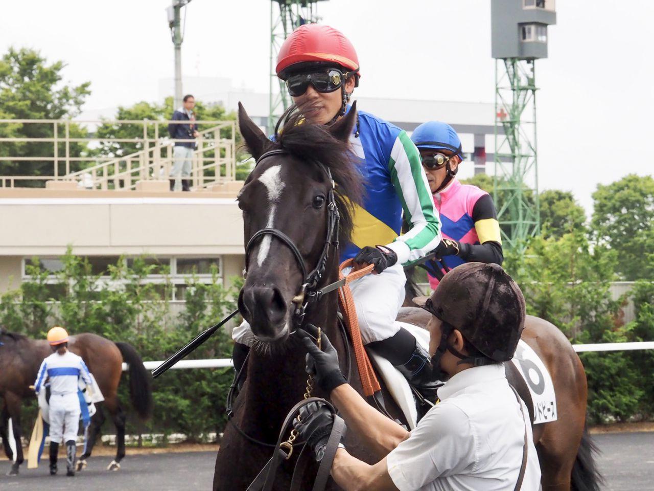 【日曜福島/新馬6R】三浦「上のクラスでもやれる」ホープホワイトがデビューV!