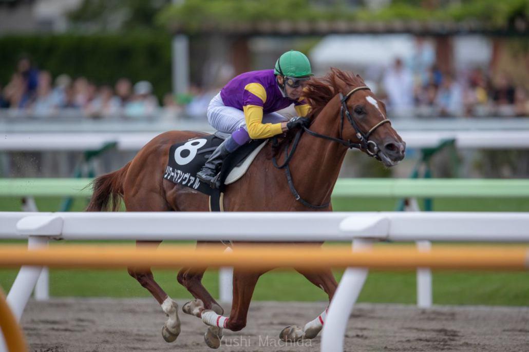 【渡島特別】武豊リワードアンヴァルが7馬身差圧勝!圧倒的人気に応える