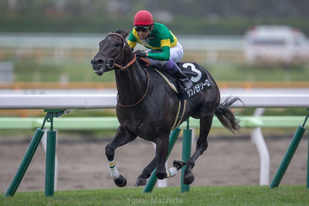 【下北半島特別】武豊サンノゼテソーロが2馬身差完勝!