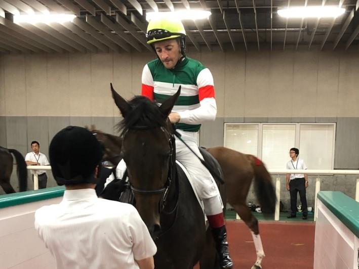 日曜新潟6R新馬はサンクテュエールが単勝1・5倍の圧倒的支持にこたえて快勝